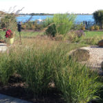 Landscape Design | Charleston, RI | Ecological Coastal Estate