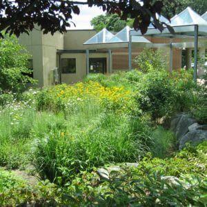 Landscape Design | Warwick, RI | Kent Hospital