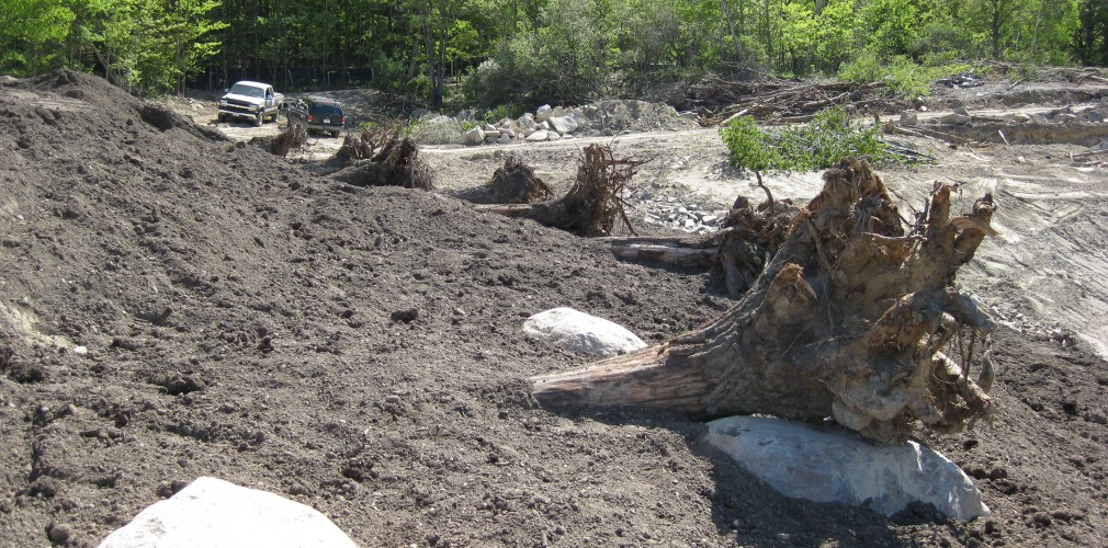 Placed Woody Revetments For Stabilization And Habitat Values Along Future Pond Shoreline.