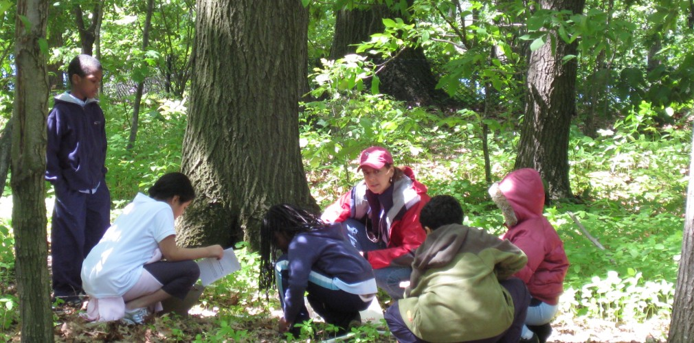 Intensive Urban Forest Management At Fresh Pond Restored Native Plant Communities And Provided Rare Nature Study Opportunities For The City Of Cambridge.