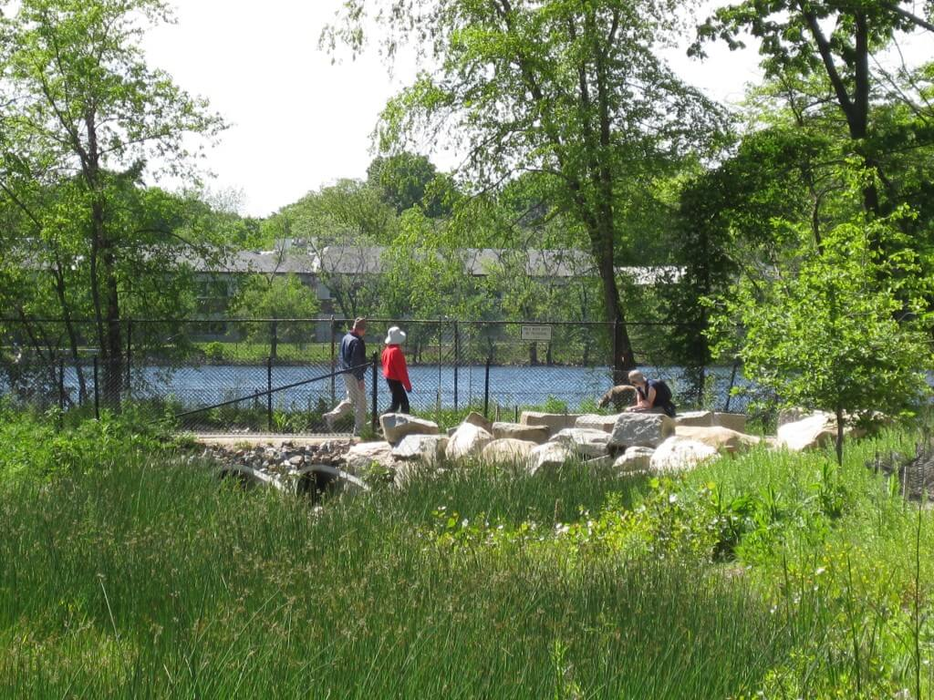 Landscape Design | Cambridge, MA | Fresh Pond Reservation