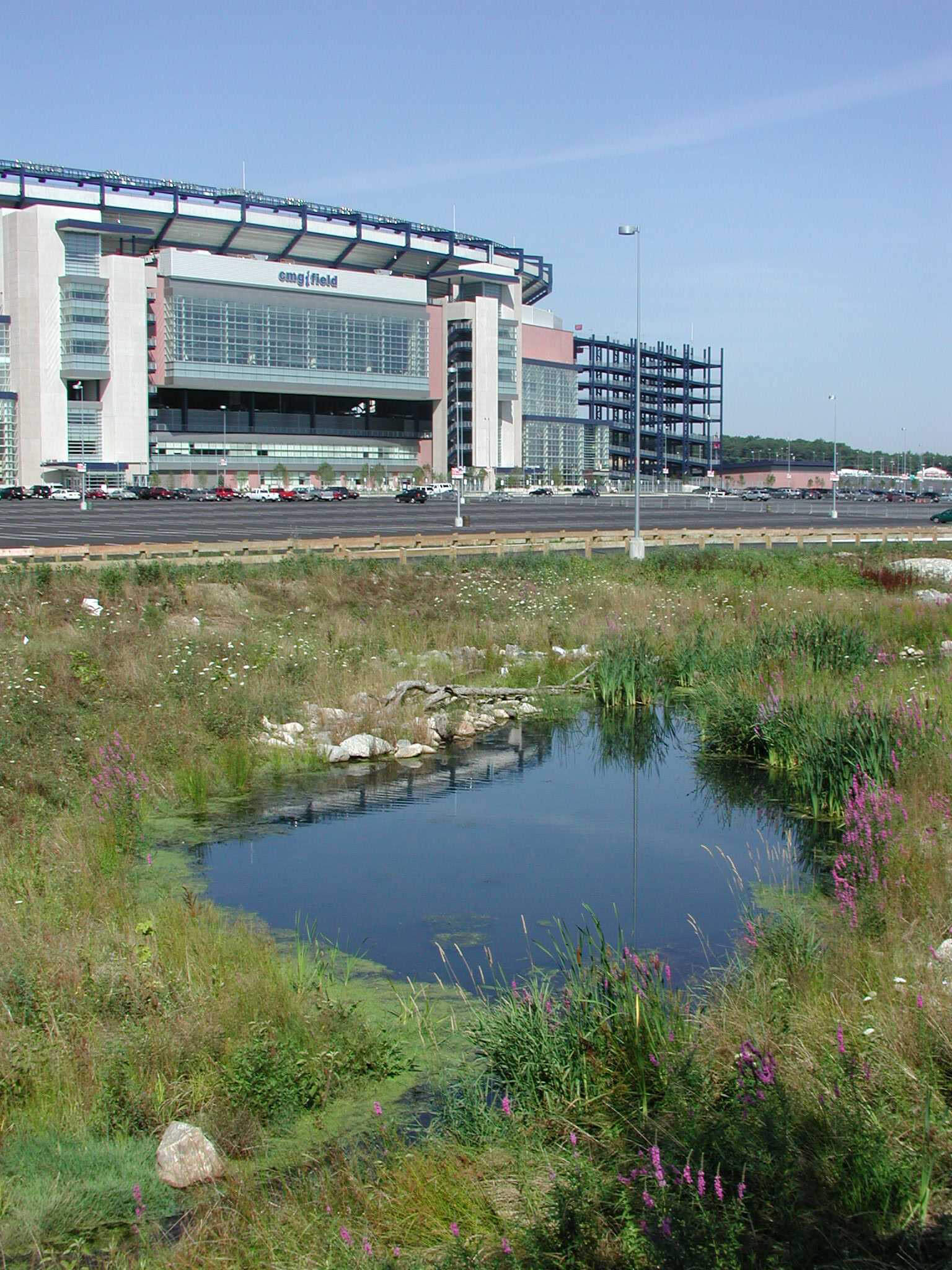 At the New England Patriots Gillette Stadium, Tom served as Lead Designer for daylighting and restoration of a one mile long section of the Neponset River (formerly confined in clogged underground culvert pipes).  Riparian edge also softened stadium's extensive parking areas.