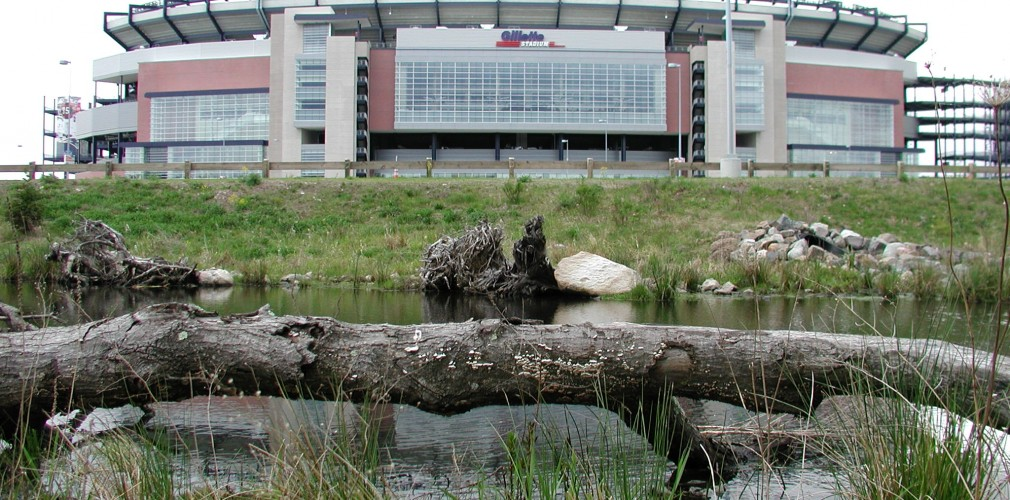 At The New England Patriots Gillette Stadium, Tom Served As Lead Designer For Daylighting And Restoration Of A One Mile Long Section Of The Neponset River.  Design Restored River's Natural Form And Function With Such Elements As Placed Logs, Rock And Extensive Native Re-vegetation.