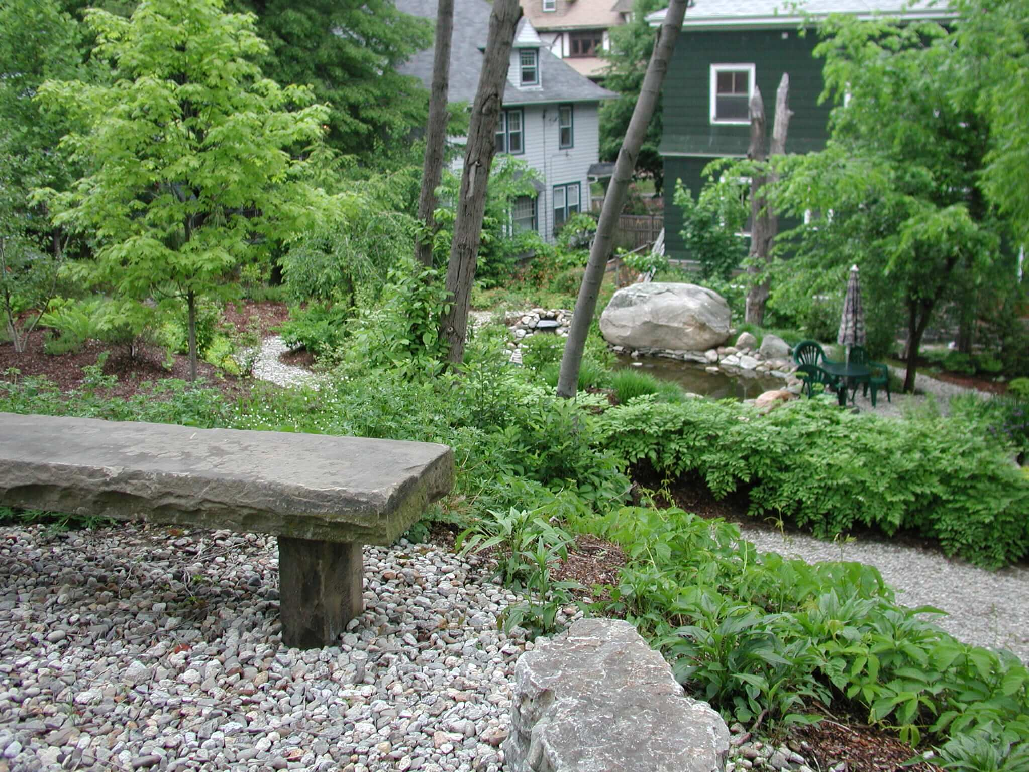 Landscape Design | Boston, MA | Urban Wild