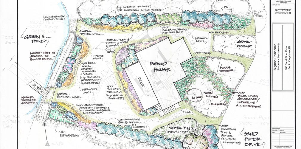 Landscape Concept Plan For This Coastal Property Emphasizes Shoreline Invasives Management To Open Water Views, Restoration Of Native Coastal Plant Community, And Rain Water Recapture In Rain Garden.