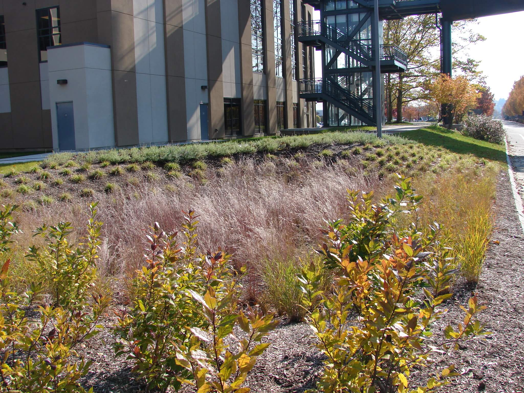 Landscape Design | Springfield, MA | LA Fitness/Basketball Hall of Fame