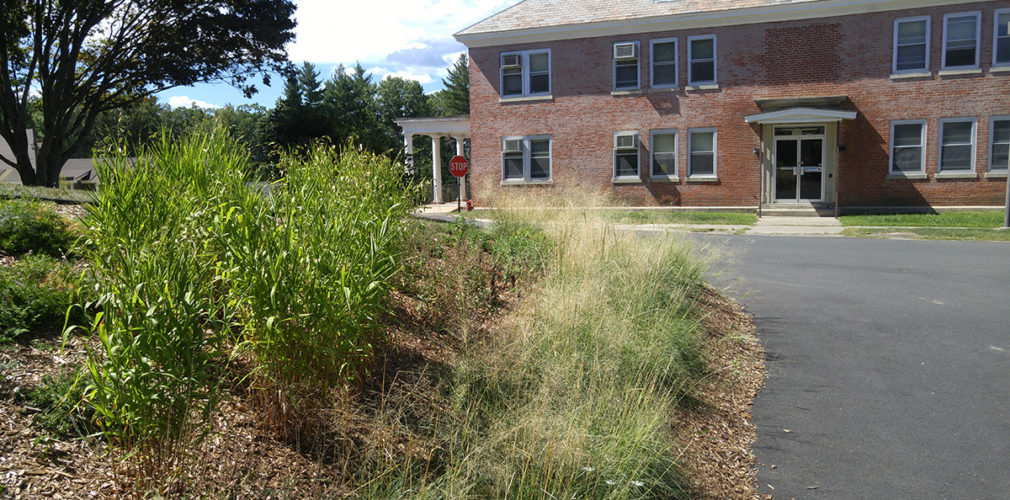 Landscape Design | Northampton, MA | Green Infrastructure ...