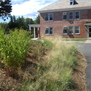 Landscape Design | Northampton, MA | Green Infrastructure Planning & Projects