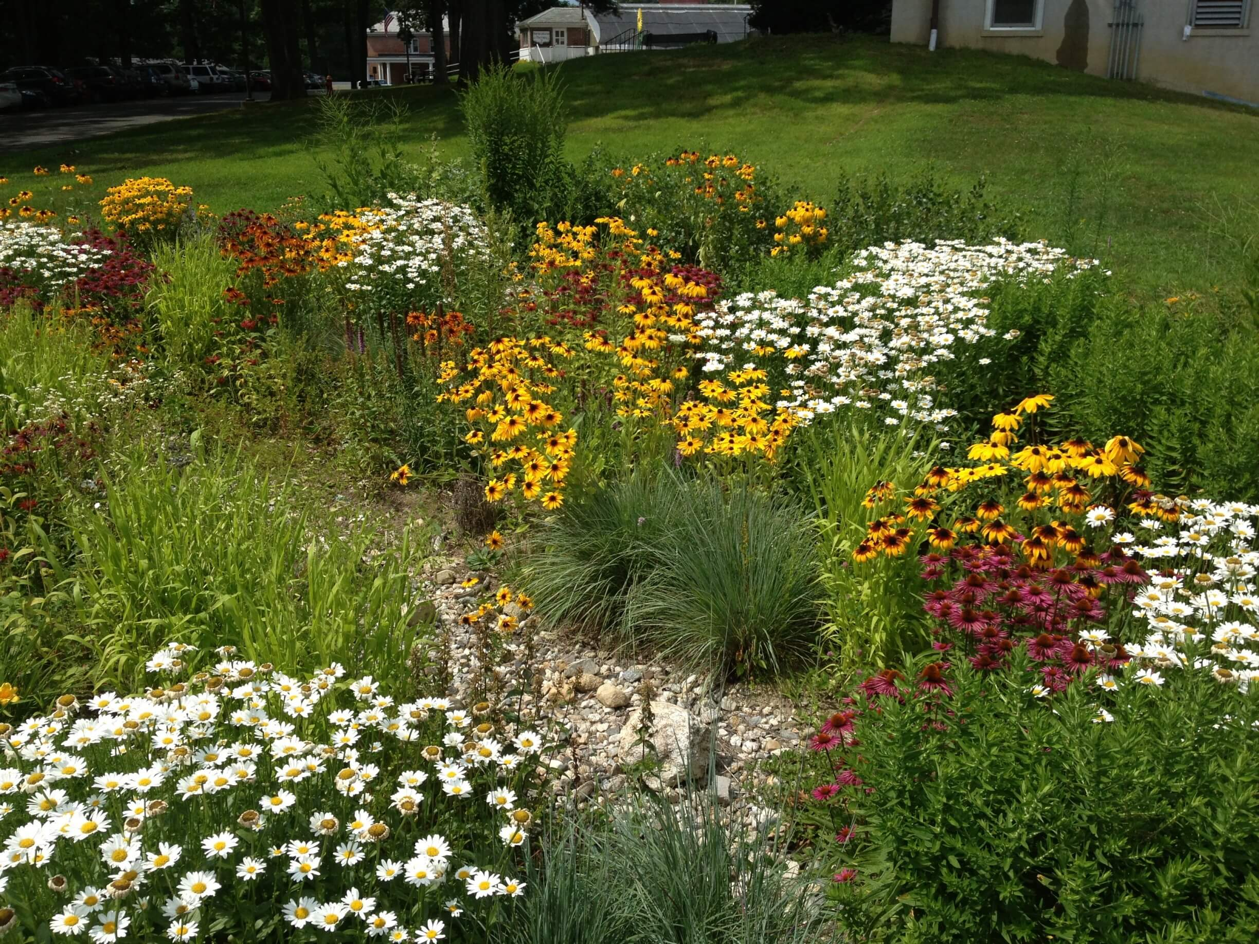 Green Infrastructure Planning & Projects