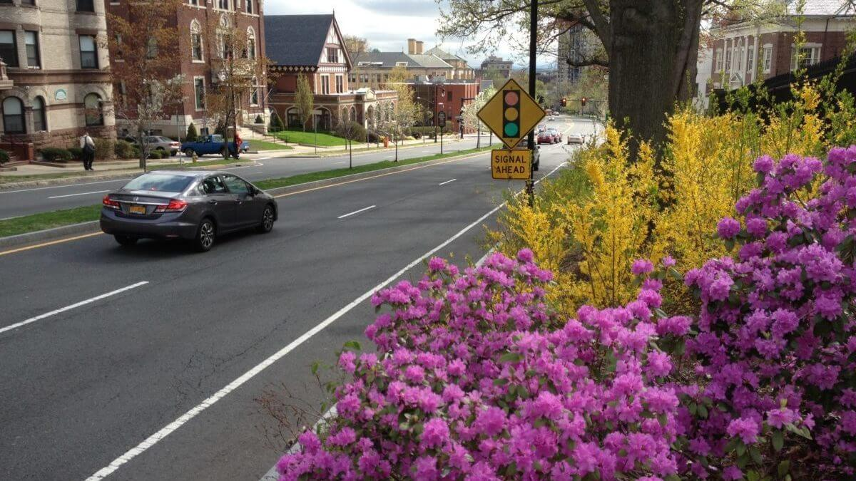 Landscape Design | Springfield, MA | State Street Improvements
