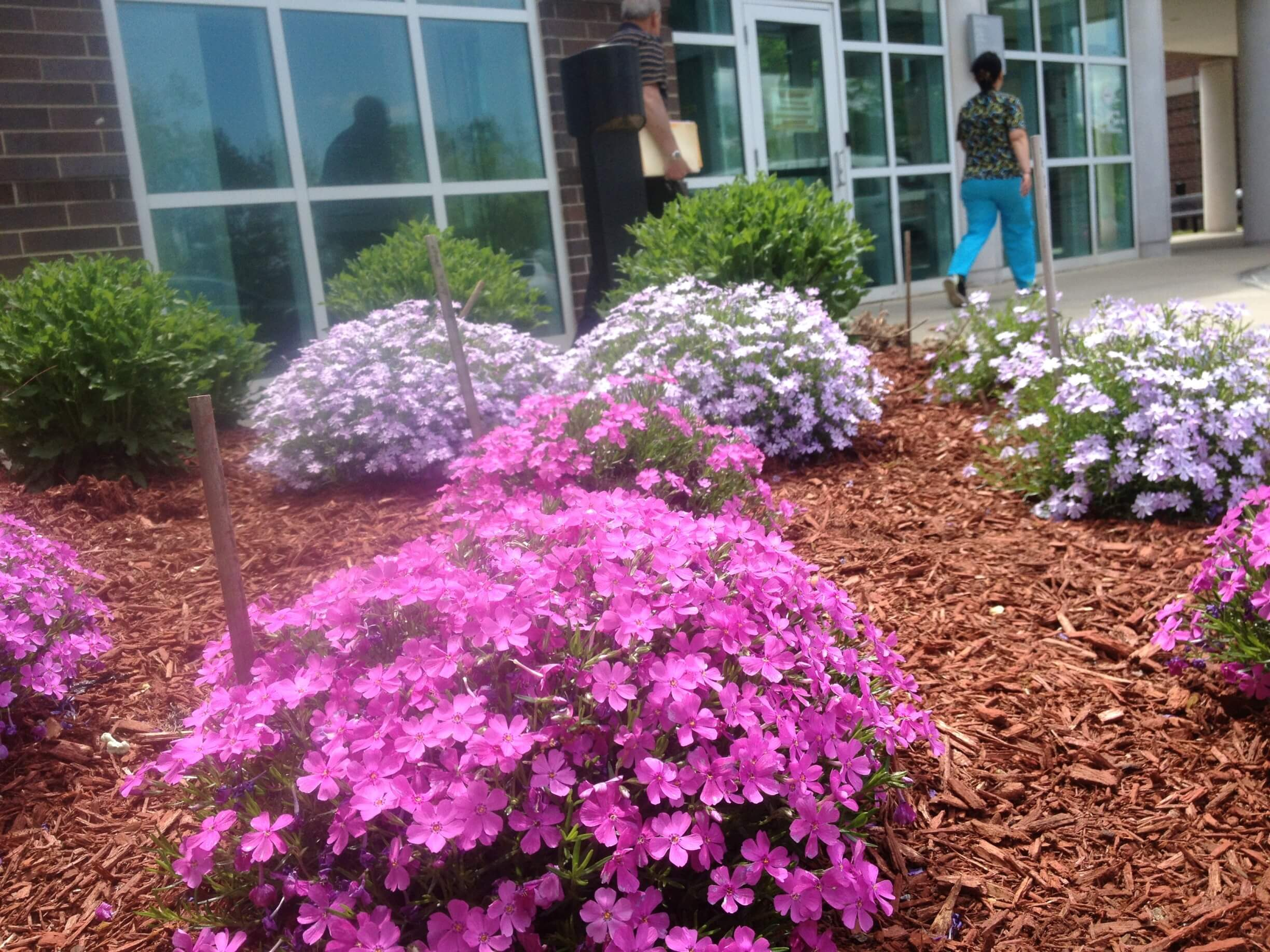 Landscape Design | Newington, CT | VA of Connecticut Healthcare System