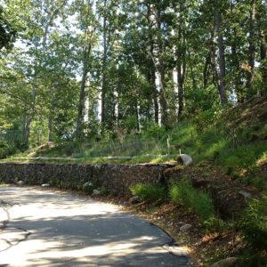 Landscape Design | Boston, MA | Jewish Community Housing For The Elderly