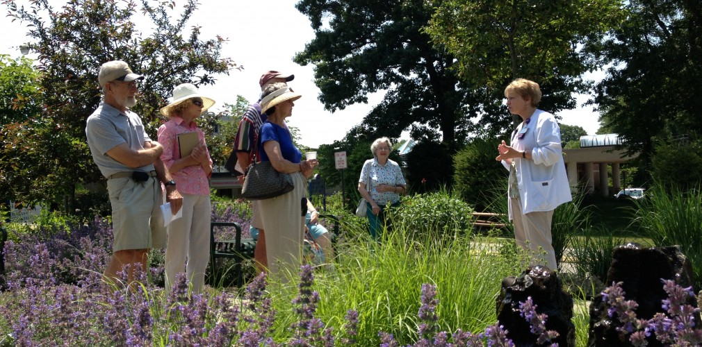 Guided Tour Of Kent's Serenity Garden And Other Sustainable Landscape Areas.