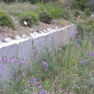 Landscape Design – S. Hadley, MA – Intensive Green Slope Reconstruction
