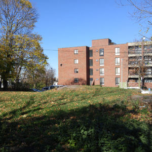 Landscape Design – Roxbury, MA – Tommy's Rock Urban Farm