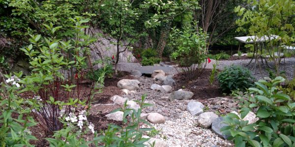 Resilient Landscape Design In Arlington, MA